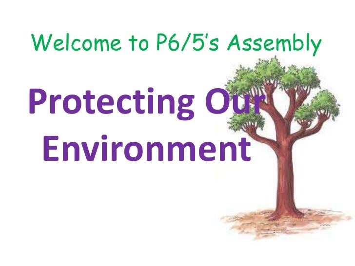 Welcome to P6/5's AssemblyProtecting Our Environment