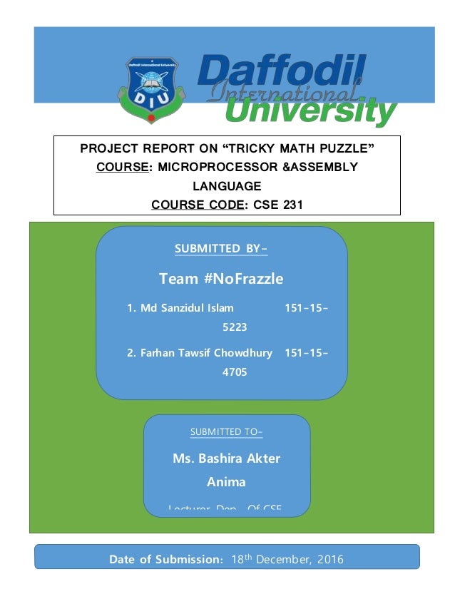 Tricky math puzzle project report
