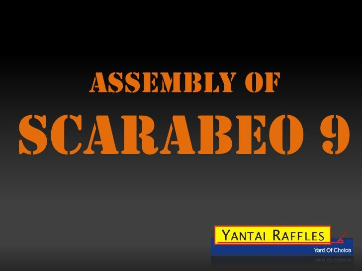 ASSEMBLY OF<br />SCARABEO 9<br />