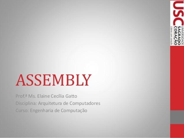 ASSEMBLY Prof.ª Ms. Elaine Cecília Gatto Disciplina: Arquitetura de Computadores Curso: Engenharia de Computação