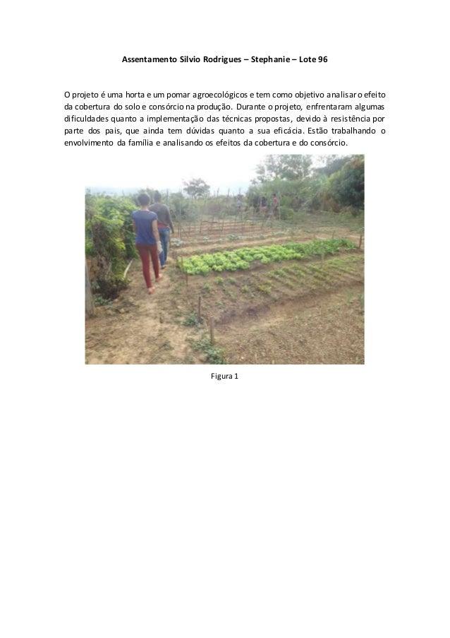 Assentamento Silvio Rodrigues – Stephanie – Lote 96 O projeto é uma horta e um pomar agroecológicos e tem como objetivo an...
