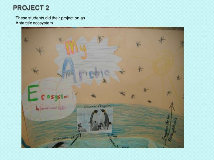 PROJECT 2These students did their project on anAntarctic ecosystem.