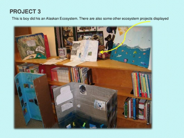 PROJECT 3This is boy did his an Alaskan Ecosystem. There are also some other ecosystem projects displayed