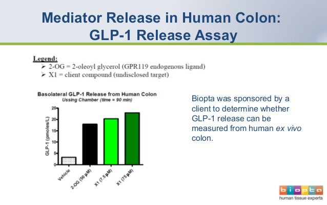 Assessing gastrointestinal toxicity using human tissues biopta