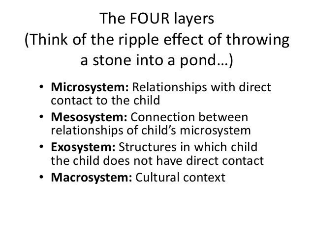 family ecology theory essay Early child development: a conceptual model from bronfenbrenner's ecological theory relationships that include family and society the theory is further.