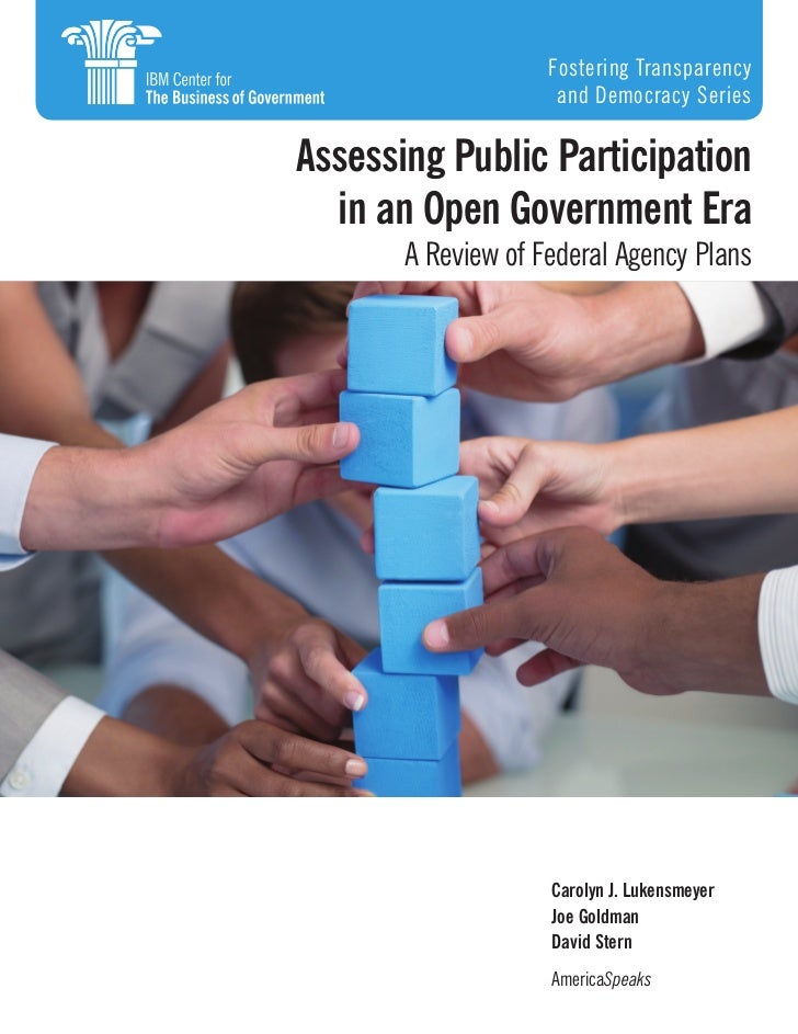 Fostering Transparency                     and Democracy SeriesAssessing Public Participation  in an Open Government Era  ...