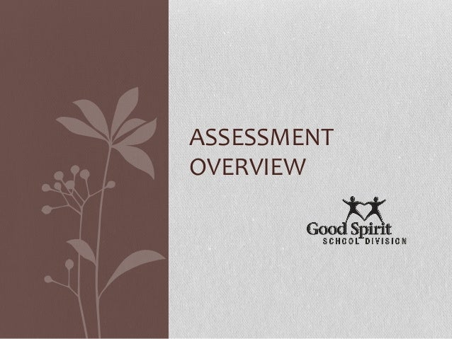 ASSESSMENT OVERVIEW