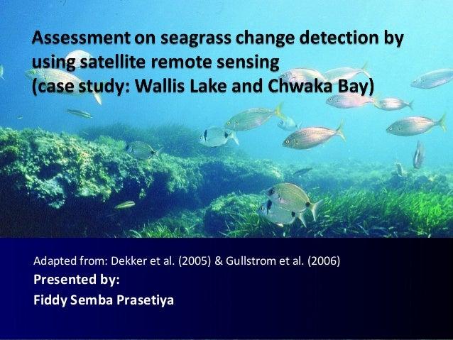 Adapted from: Dekker et al. (2005) & Gullstrom et al. (2006) Presented by: Fiddy Semba Prasetiya