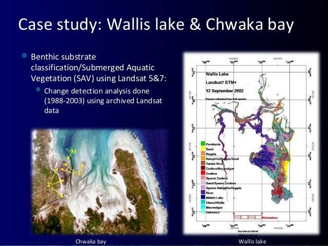 Case study: Wallis lake & Chwaka bay Benthic substrate classification/Submerged Aquatic Vegetation (SAV) using Landsat 5&...
