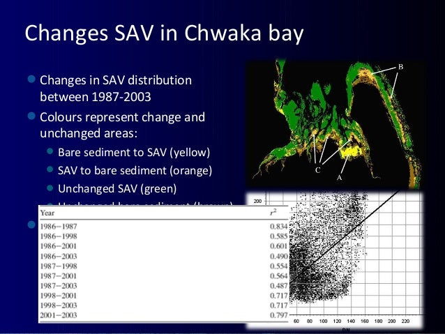 Changes SAV in Chwaka bay Changes in SAV distribution between 1987-2003 Colours represent change and unchanged areas: B...