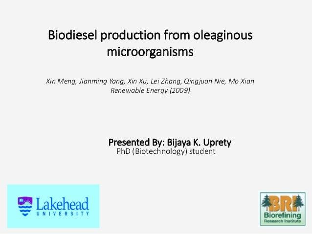 Biodiesel production from oleaginous microorganisms Xin Meng, Jianming Yang, Xin Xu, Lei Zhang, Qingjuan Nie, Mo Xian Rene...