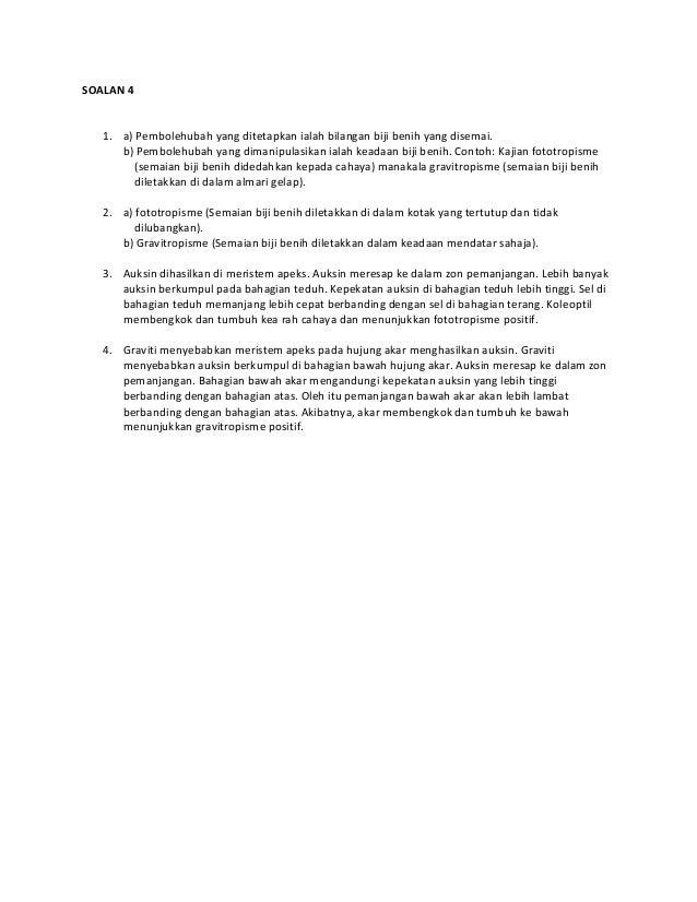 Assignment Slide 3