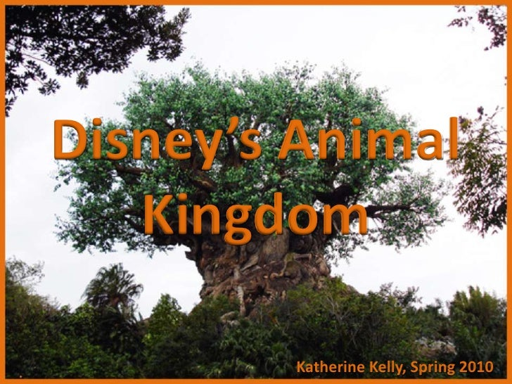 Disney's Animal Kingdom<br />© Katherine Kelly, Spring 2010<br />