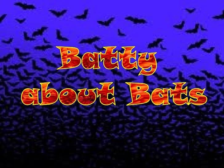 IF THEY FLY,            WHY ARENT THEY BIRDS?Bats are mammals.They have fur or hair.A baby bat is born l...