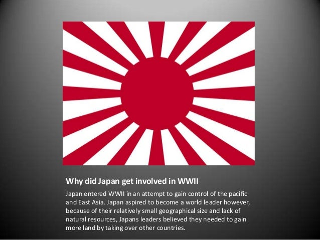 What Natural Resources Did Japan Lack
