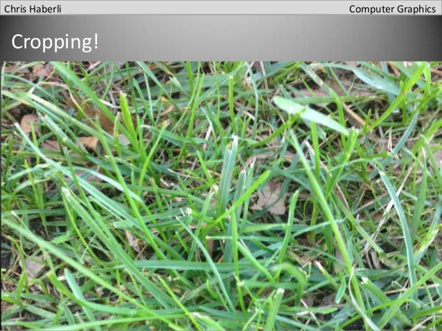 Chris Haberli  Cropping!  Computer Graphics