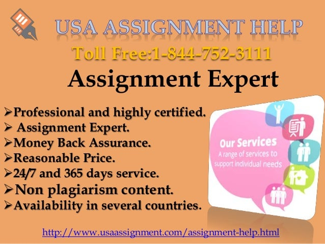 My assignment expert review