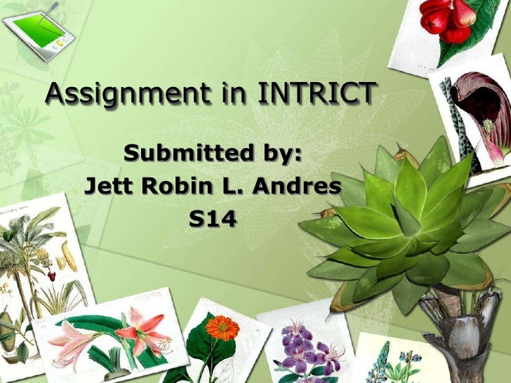 Assignment in INTRICT<br />Submitted by:<br />Jett Robin L. Andres<br />S14<br />