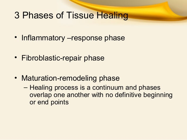 tissue repair process Some parts of our bodies can repair themselves quite well after and a goal in regenerative medicine is to find ways to kick-start tissue regeneration in the.