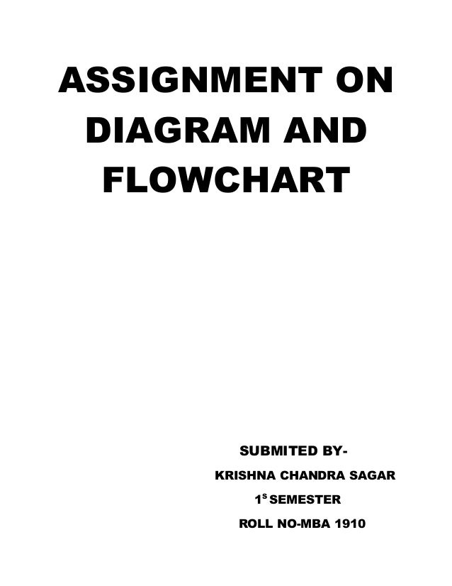 Assignment on diagram and flowchart 1
