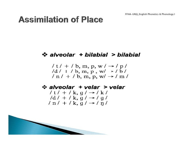 assimilation and accommodation In everyday language the difference between the terms learning and adaptation   the help of his concepts of assimilation and accommodation,.