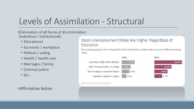 assimilation Research Paper Starter