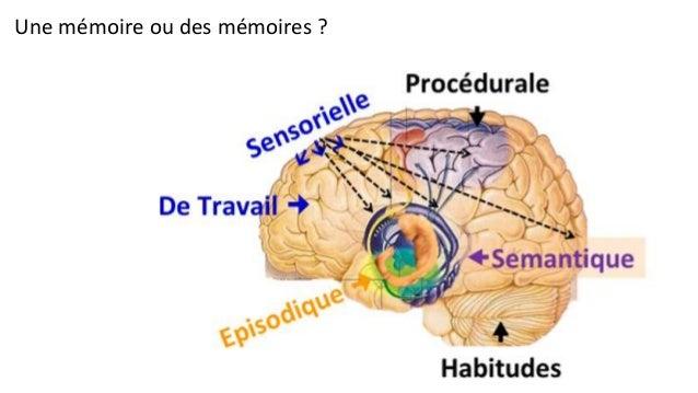 http://fr.slideshare.net/vincent-datin/etat-des-rseaux-sociaux-mars-2014