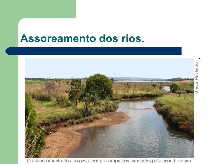 Assoreamento dos rios.