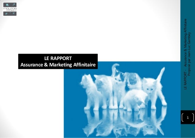 1 LE RAPPORT Assurance & Marketing Affinitaire LERAPPORT-Assurance&MarketingAffinitaire ProposéparJean-LucGambey