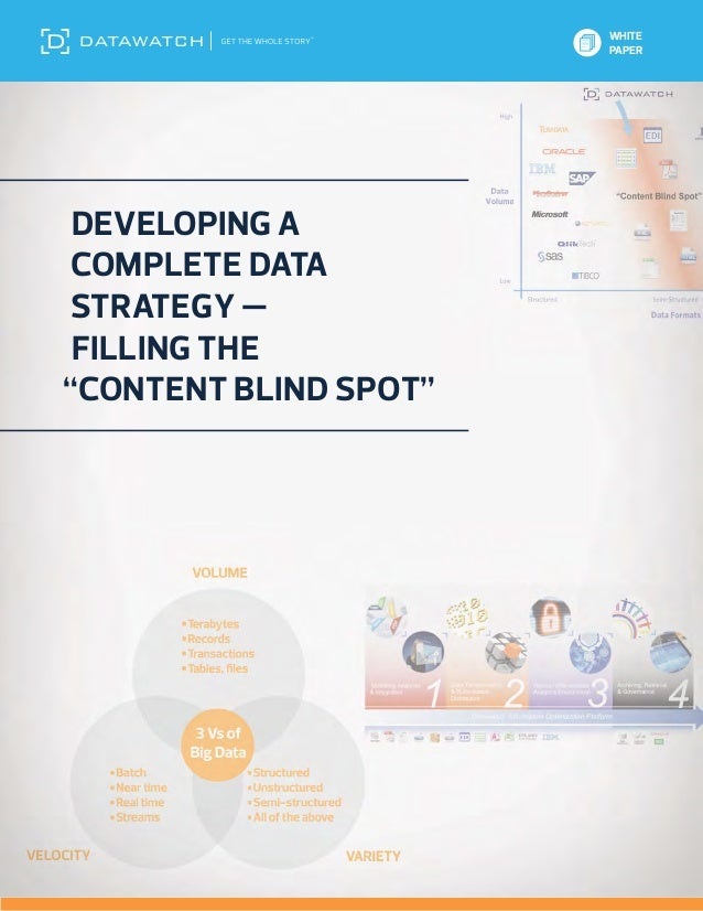 """WHITE                       PAPER Developing a Complete DataStrategy — Filling the""""Content Blind Spot"""""""
