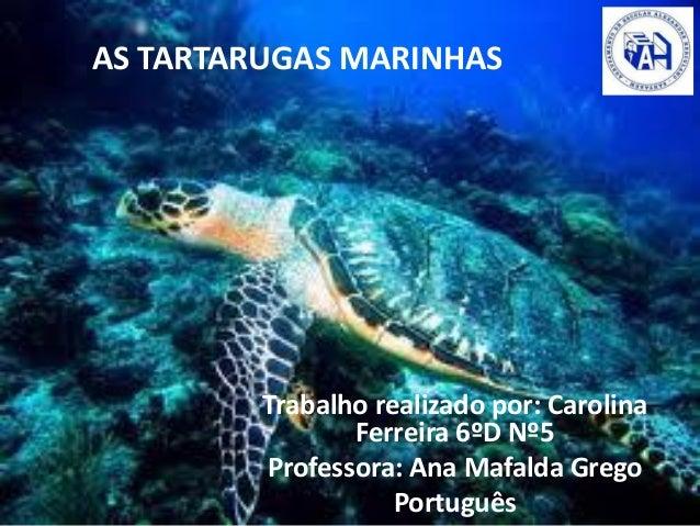 AS TARTARUGAS MARINHAS Trabalho realizado por: Carolina Ferreira 6ºD Nº5 Professora: Ana Mafalda Grego Português