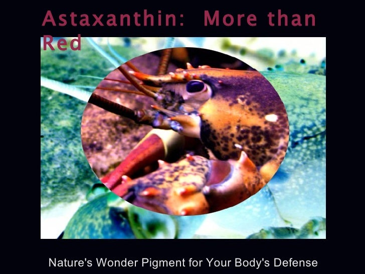 Astaxanthin:  More than Red Nature's Wonder Pigment for Your Body's Defense