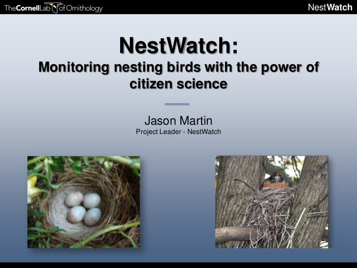 NestWatch            NestWatch:Monitoring nesting birds with the power of             citizen science                Jason...