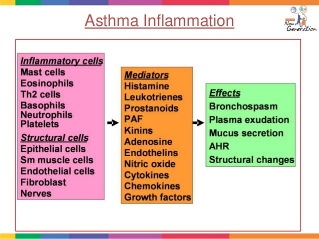 bronchial asthma case study scribd Etiology: asthma commonly results from hyperresponsiveness of the trachea and bronchi to irritants allergy influences both the persistence and the severity of asthma, and atopy or the 1|page case study: bronchial asthma in acute exacerbation genetic predisposition for the development of an ige-mediated.
