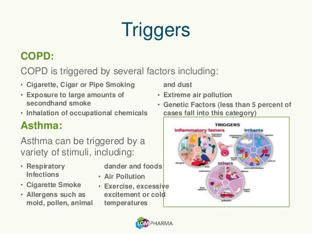 an overview of asthma triggering factors and symptoms Information on environmental asthma triggers for patients and health  focus on  the triggers or factors in the environment that bring on asthma symptoms.
