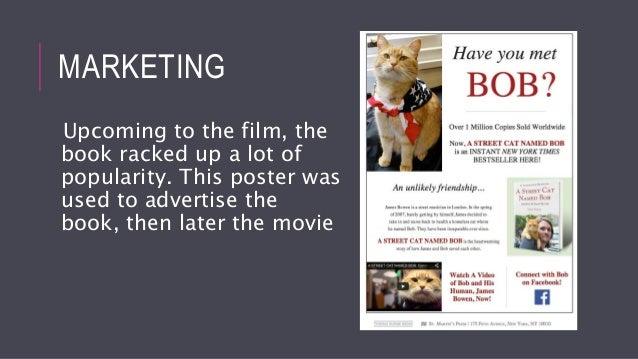 S Street Cat Named Bob Rotten Tomatoes
