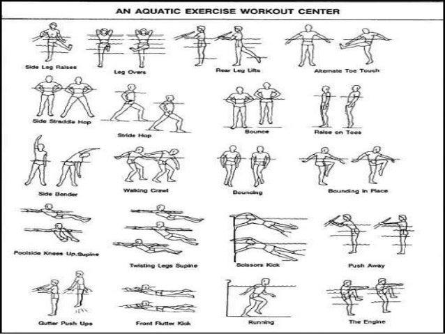 Aquatic Exercise Diagram Diy Enthusiasts Wiring Diagrams