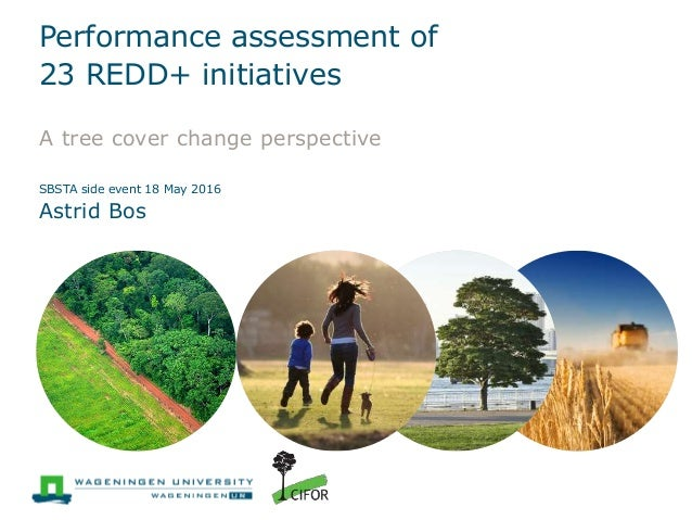 Performance Assessment Of 23 Redd+ Initiatives: A Tree Cover Change P…