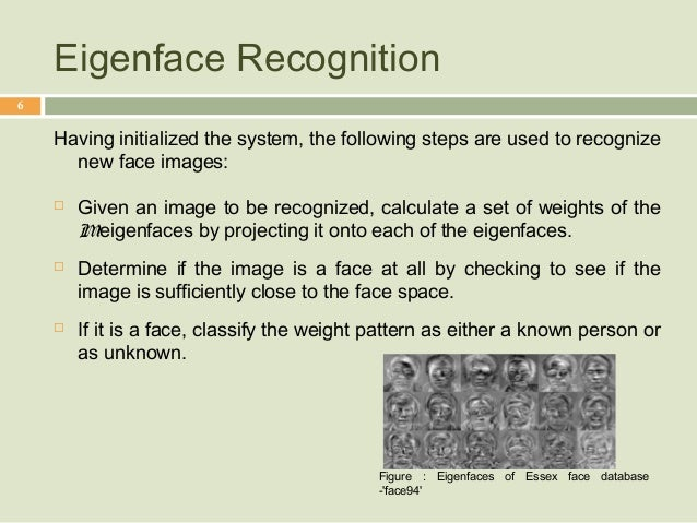 Learning Face Representation from Scratch - arXiv