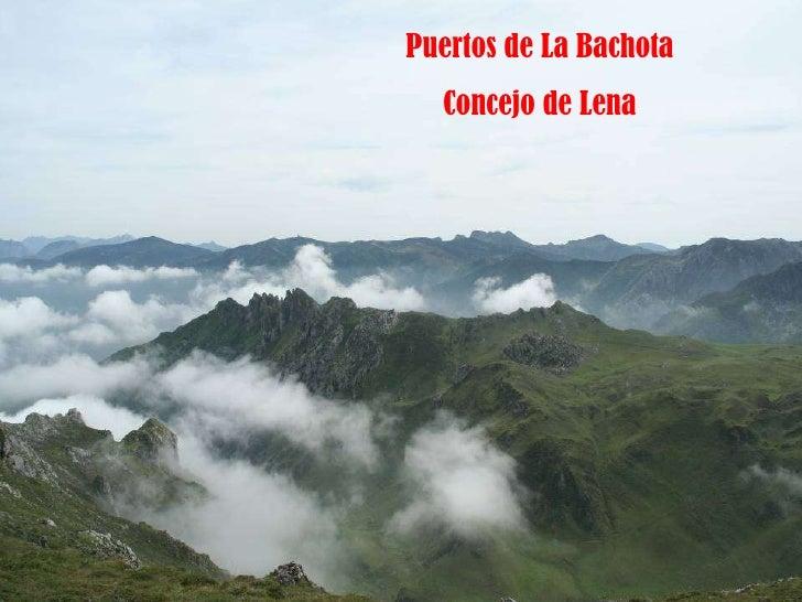 Puertos de La Bachota Concejo de Lena