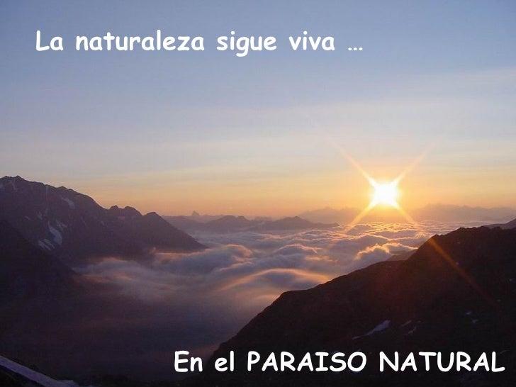 La naturaleza sigue viva … En el PARAISO NATURAL