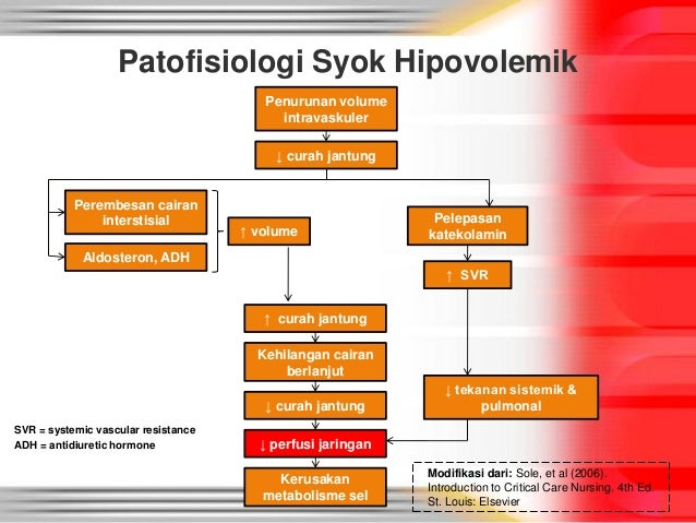 PDF) Panduan Penanganan Reaksi Syok