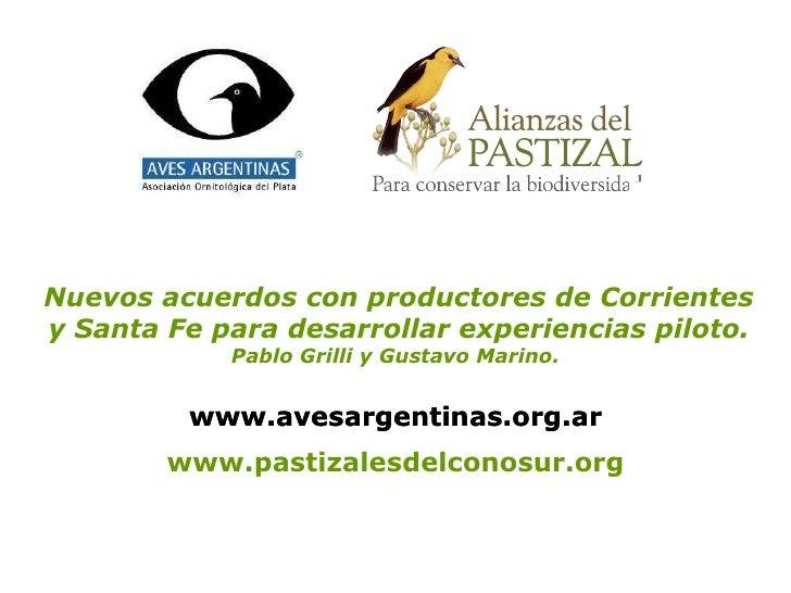 www.pastizalesdelconosur.org Nuevos acuerdos con productores de Corrientes y Santa Fe para desarrollar experiencias piloto...