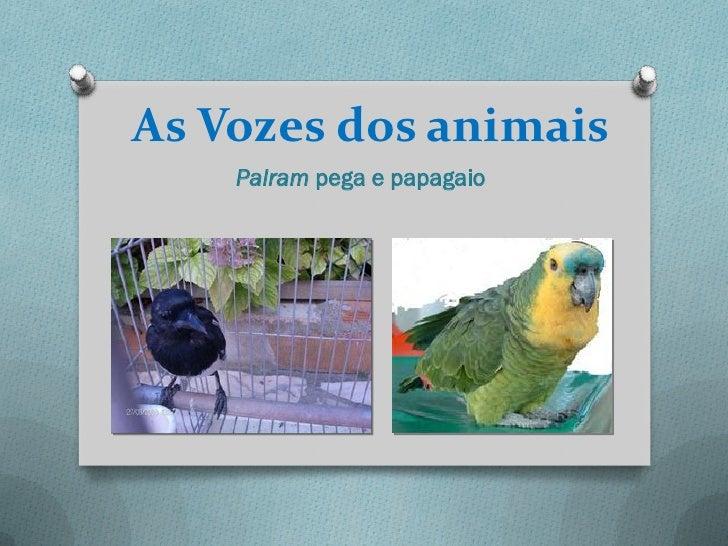As Vozes dos animais    Palram pega e papagaio