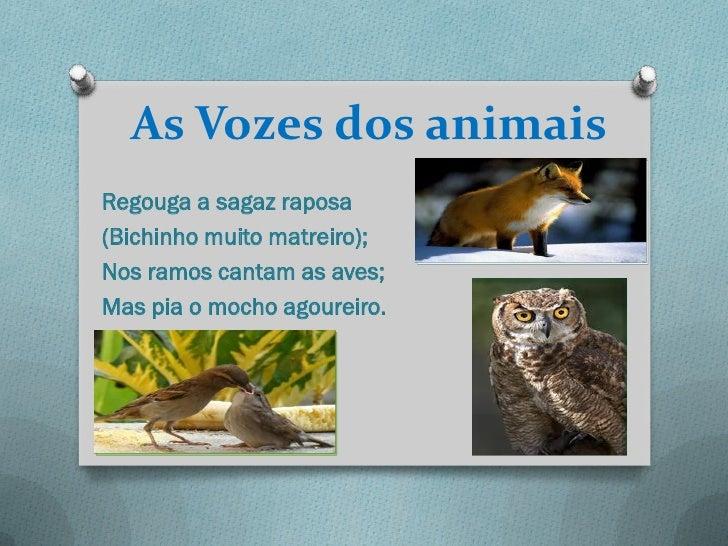 As Vozes dos animaisRegouga a sagaz raposa(Bichinho muito matreiro);Nos ramos cantam as aves;Mas pia o mocho agoureiro.