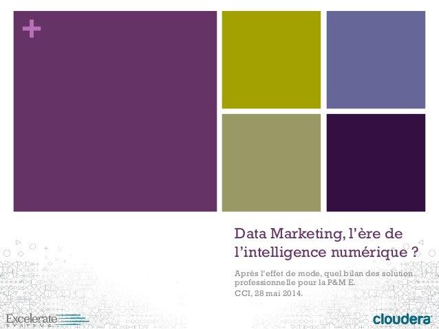 +  Data Marketing, l'ère de l'intelligence numérique ?  Après l'effet de mode, quel bilan des solution professionnelle pou...