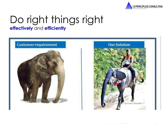 Do right things right  effectively and efficiently