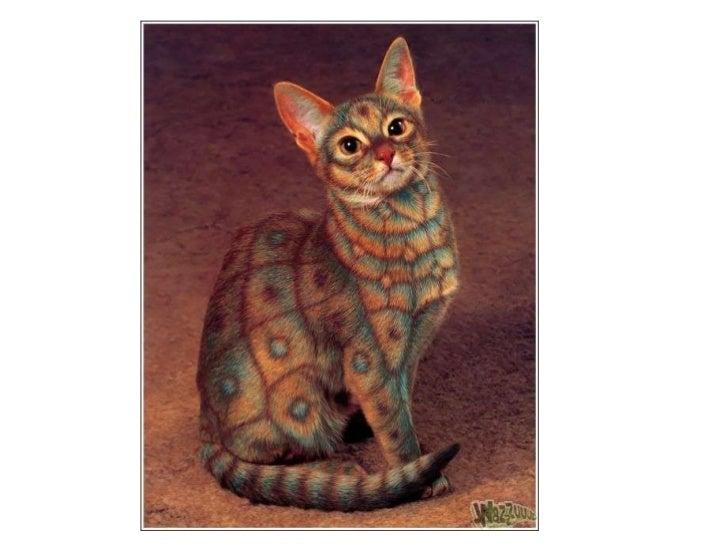 Gatos pintados Slide 3