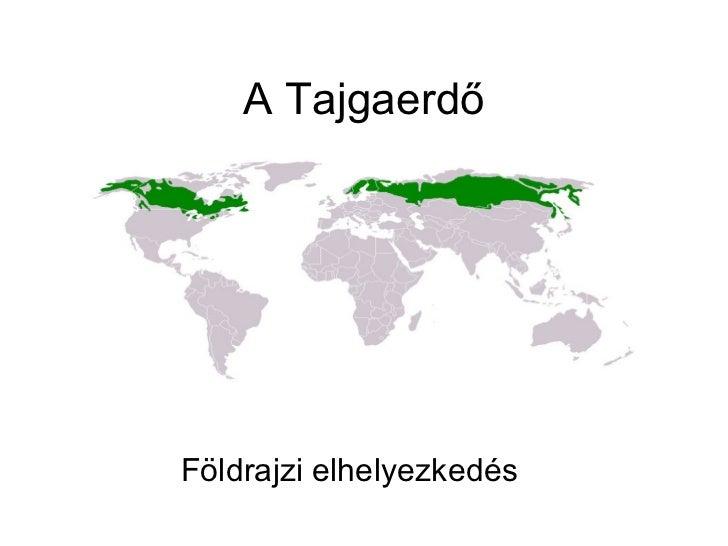 A TajgaerdőFöldrajzi elhelyezkedés