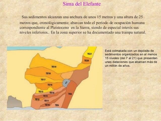 Sima del Elefante Sus sedimentos alcanzan una anchura de unos 15 metros y una altura de 25 metros que, cronológicamente, a...